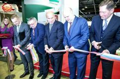 Национальный отраслевой форум «Отечественные строительные материалы — 2019» пройдет в Москве