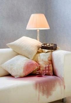 """""""СибГард"""" научит предотвращать появление пятен на диване"""