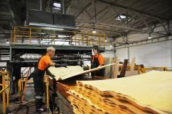 В России появится крупный фанерный завод