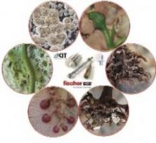 Компания fischer стала основателем уникальных исследовательских кафедр на базе биотехнологий