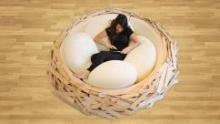 """Студия """"OGE CreativeGroup"""" представила диван в виде большого гнезда"""